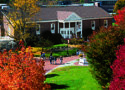 Western New England University College of Business