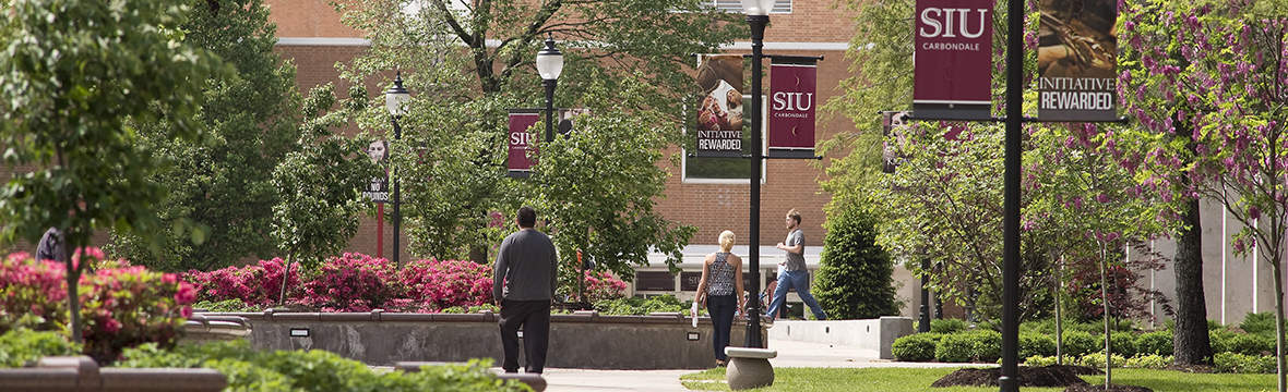 southern illinois university admission essay Find out admissions requirements for southern illinois university edwardsville, including gpa requirements and sat, act, and application requirements.