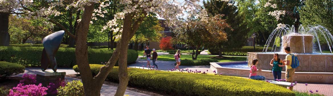 Elmira College campus