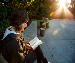Seattle University - The Princeton Review College Rankings