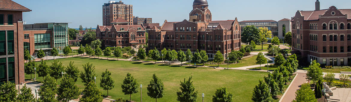 Loyola University of Chicago - The Princeton Review College ...
