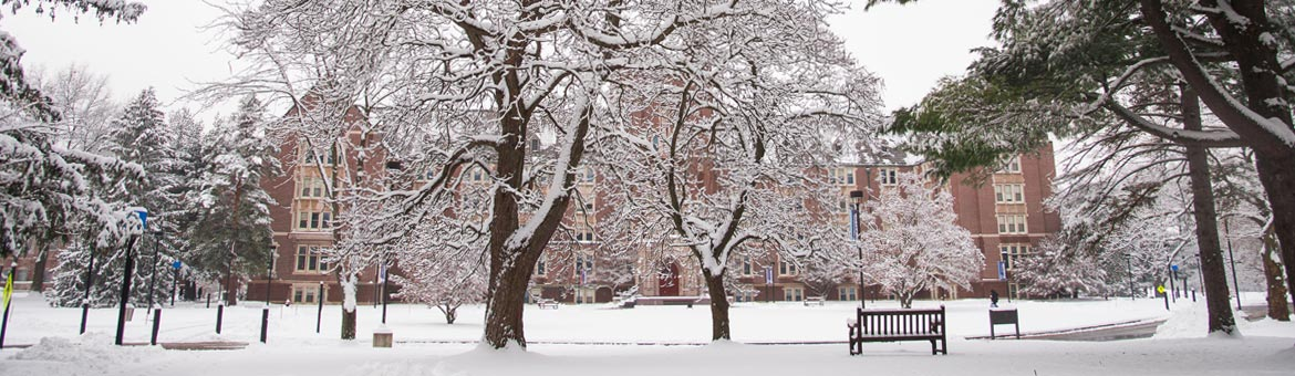 Nazareth College campus
