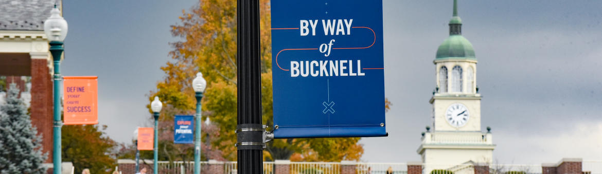 Bucknell University - The Princeton Review College Rankings