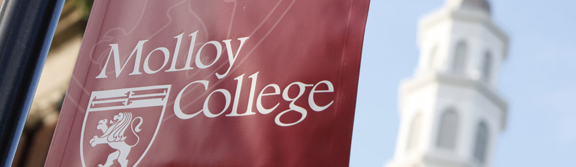 Molloy College campus