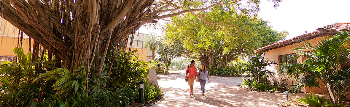 Stetson University College Of Law >> Stetson University College Of Law The Princeton Review