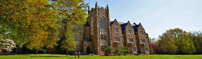 Rhodes College The Princeton Review College Rankings Reviews