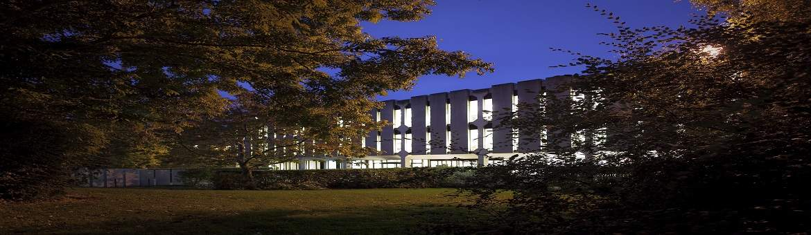 Academic Supports | Maynooth University