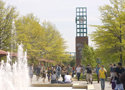 State University of New York- Binghamton University